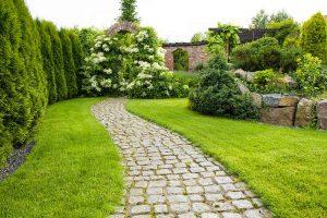 Grüner Zaun als Sichtschutz im Garten